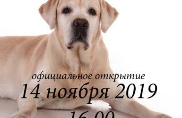Выставка Ирины Давыдовой